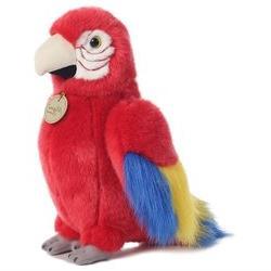 Miyoni Macaw Parrot 11 by Aurora
