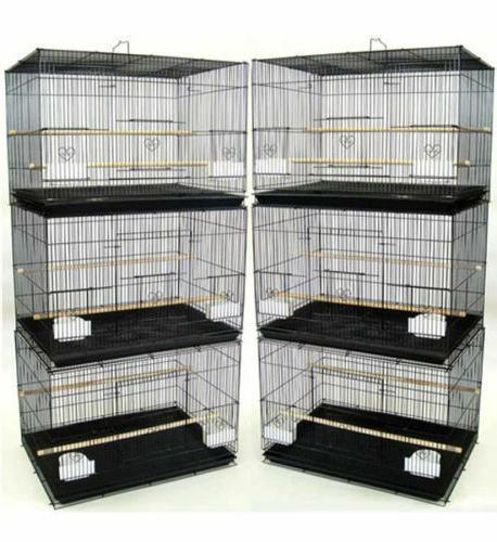 lot of 6 aviary canary budgies parakeet