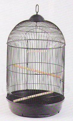 NEW Round Dome Top Bird Finch Canary Cockatiel Parakeet Love