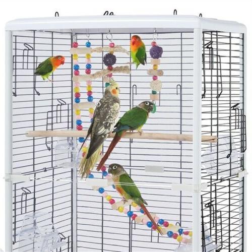 Open Transparent Back Birds Finch w/Toys