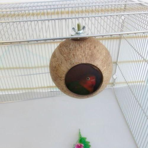 Natural Parrot Nest Coconut Shell House Cage Feeder Parakeet