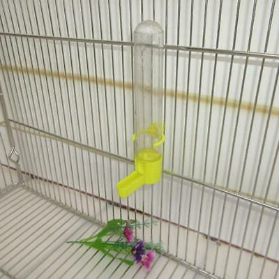 Parrot Automatic Drinking Birds Supplies-