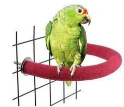 Parrot grinding rod <font><b>bird</b></font> toy claw rod st