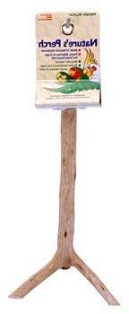Penn Plax Wooden Bird Perch, Small