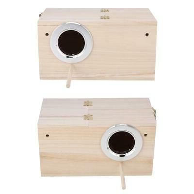 Pet Nest Box Finch