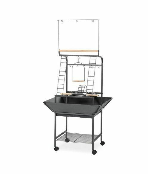 Prevue Pet Products Small Parrot Playstand 3181 Black Hammer