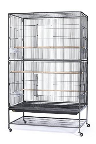 Prevue Hendryx Pet Products Iron Flight Cage, X-Large, Black