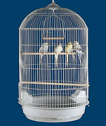 round dome canary cockatiel parakeet