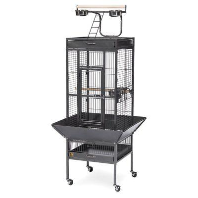 select wrought iron cockatiel cage 3151