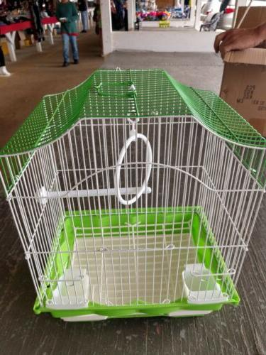 Small Cage Finch