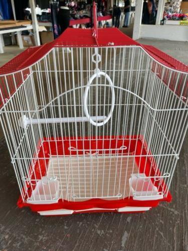 small cage parakeet finch lovebird