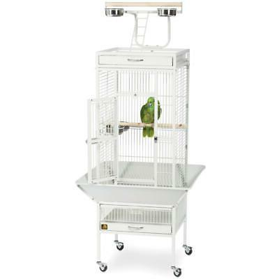 Small Wrought Parrot w/ Wheeled Play Top