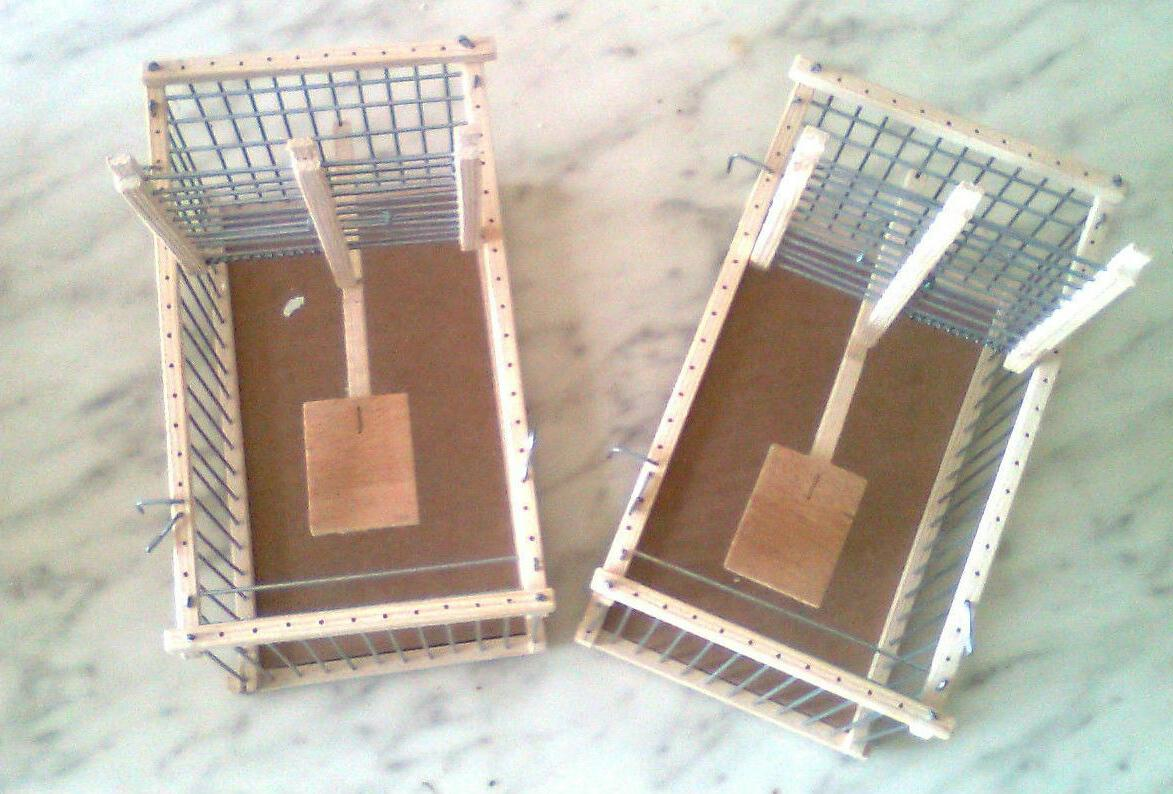 Two Cages  Trap :: Can be used as Transport Cage // Bird  Tr