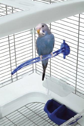 Vision Bird Small