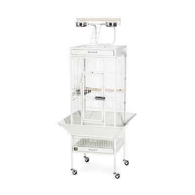 wrought iron select cage chalk white 3151c