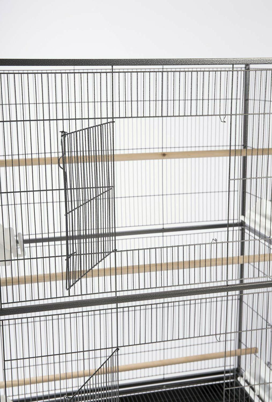 Prevue Products Birds Hammert