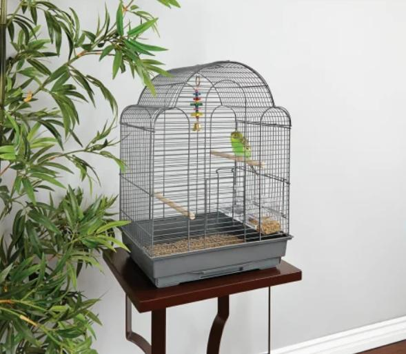 you and me parakeet scallop top cage