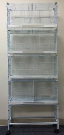 NEW Large CAMBO-4 of Bird Finch Lovebirds Breeding Breeder C