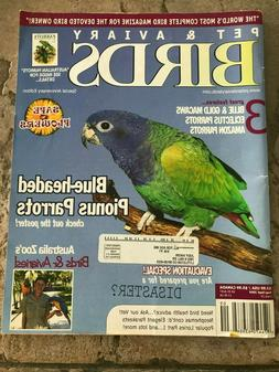 New! PET & AVIARY BIRDS, Aug/Sept 2004, Macaws, Blue-Headed