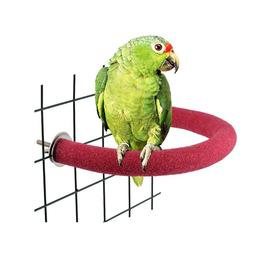 Parrot Scrub Stick Frosted Bend <font><b>Corner</b></font> S