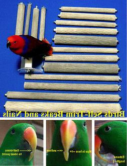 """PEDICURE Parrot PERCH 1½""""x13"""" bark-textured stone for cages"""