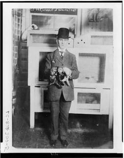 Photo: Rat catcher & ferrets,well dressed man,three ferrets,