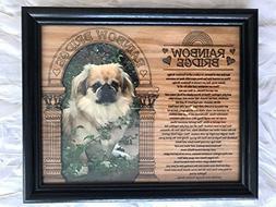8 x 10 Rainbow Bridge Pet Sympathy Memorial Memory Picture F