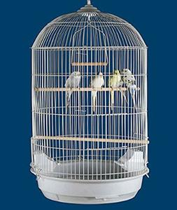 Mcage NEW Round Dome Canary Cockatiel Parakeet Bird Cage 16""