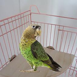Wood Perch Platform for Pet Bird Parrot Macaw African Greys